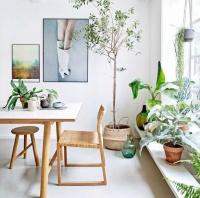 恬淡清雅家具 打造自然系家居生活